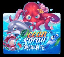 Ocean Spary Joker-Roma