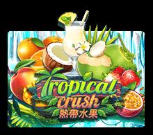 รีวิวเกม Tropical Crush