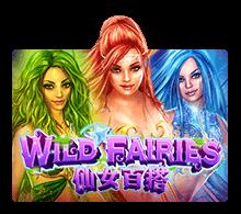 Wild Fairies - joker-roma