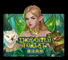 Enchanted Forest - joker-roma