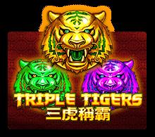 Triple Tigers - joker-roma